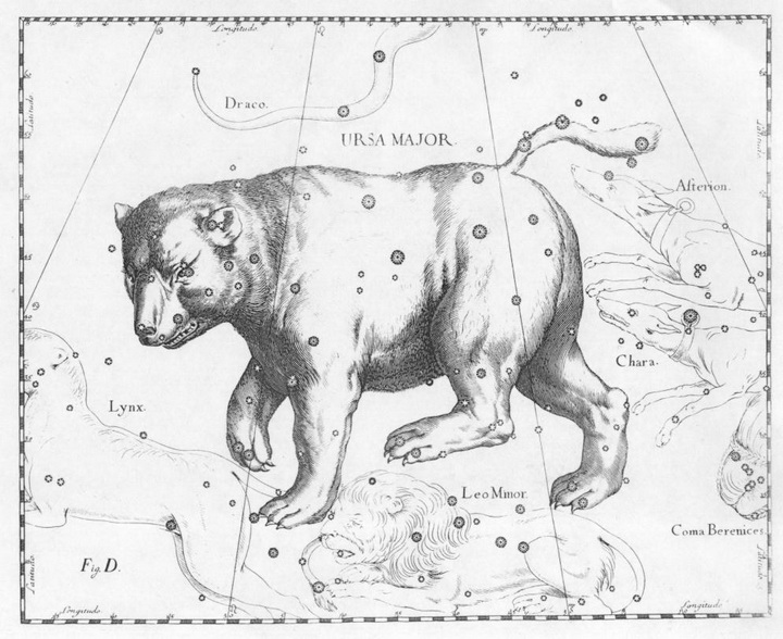 Ursa_Major_constellation_Hevelius1