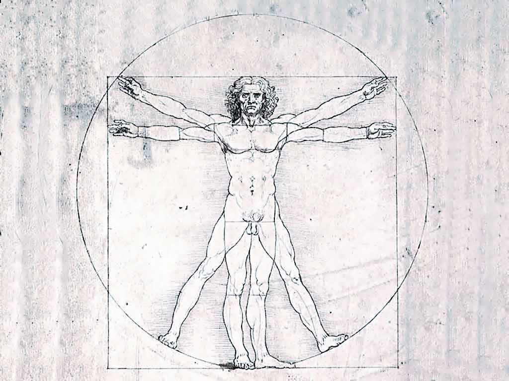 ТЭОРЫЯ І ПРАКТЫКА МОВЫ  Чалавек – добры, мужчына, жывёла, разумны, істота, асоба, звер…