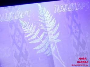 ФОТАФАКТ Таемны вадзяны знак беларускага пашпарта — папараць-кветка!