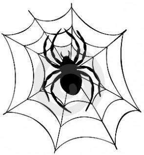 ГІМНАСТЫКА ДЛЯ ВАЧЭЙ: Павучок