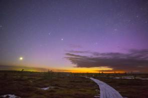 Фотападарожжа: ноч і раніца на балоце Ельня