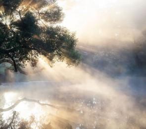 Туманная раніца ў Вязынцы. Фота Віктара Малышчыца