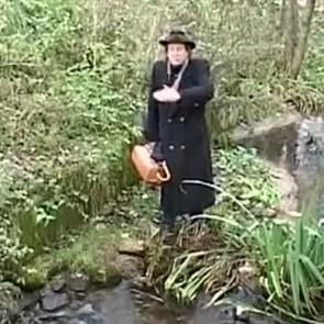 Ваўкавыск