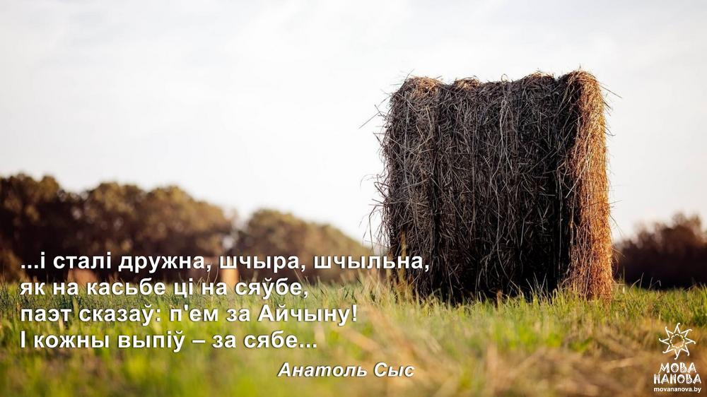 Anatol_Sys_za_siabe1
