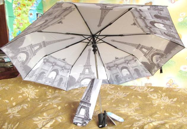Umbrella_parige_01