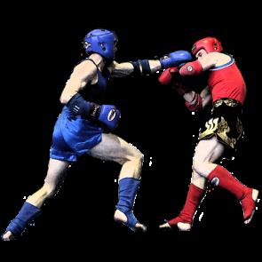 Выпуск 131. Бокс