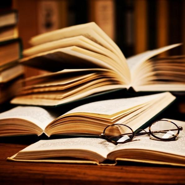 ВІДЭА Поўны запіс заняткаў Мова Нанова — Кнігі