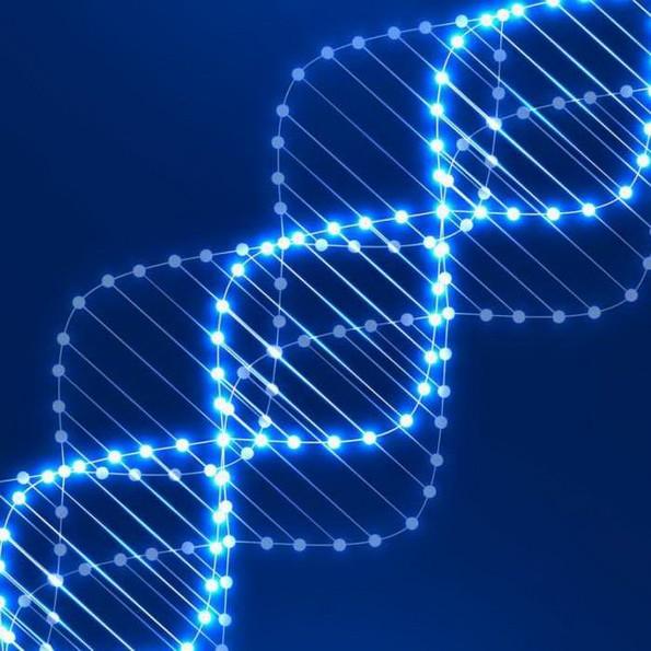 ВІДЭА Поўны запіс заняткаў Мова Нанова — Генетыка